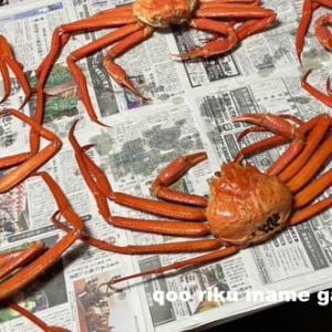蟹だ!蟹だ!蟹だーーーー!!