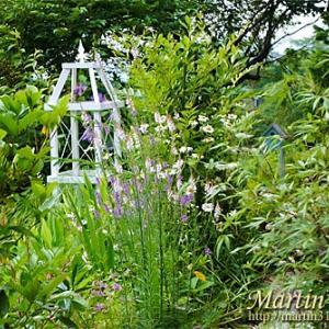 アニバーサリー・・・10年目の庭。