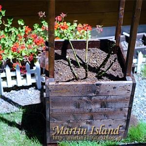 [DIY] バラ用木製コンテナの再製作。