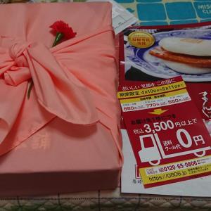母の日プレゼント/長崎角煮まんじゅう
