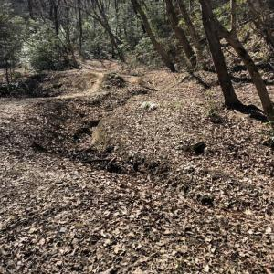 長淵丘陵未踏破コースで赤ぼっこ1