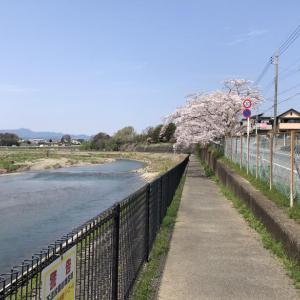 秋川サイクリングロード現状