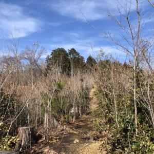 ひので野鳥の森公園(ほぼコンプリート1)