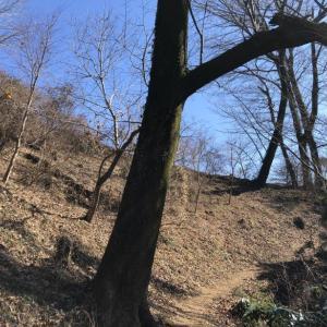 天王山ハイキングコースで行く津久井堂所山1