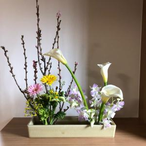 桃の節句の生け花