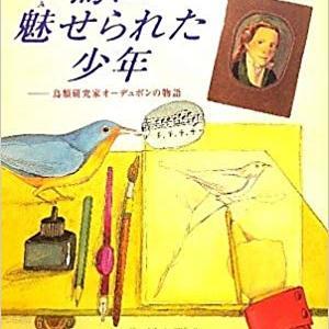 (本レビュー)物語にも魅せられる「鳥に魅せられた少年 鳥類研究家オーデュボンの物語」