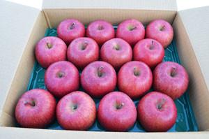 「雪中貯蔵りんご」ご予約承り中です!