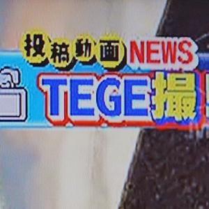『リョーガ君』がテレビに出たーーーっ!yo