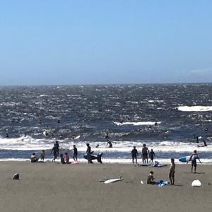 今日の鵠沼海岸 波情報