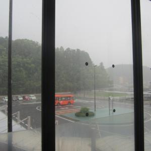 <大阪営業所のNドライバーさん>「電車運休の為、28時間行動止められた」