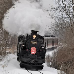 SL冬の湿原号(2020/2/15・16上り五十石・ルルラン踏切)