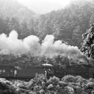 新SL現役時代のアーカイブ(関西本線その14)