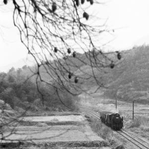 新SL現役時代のアーカイブ(田川線その6)