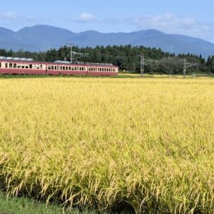 えちごトキめき鉄道(2021/9/25関山)