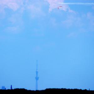 都心上空を飛んだブルーインパルス と 月面X!