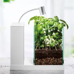 僕がAQUA-Uで植物を育てる理由
