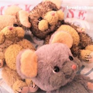 グレ~☆サンド☆ハリ~♪…ネズネズ(●´ω`●)