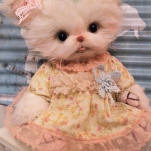 ロングアルパカの抱っこ猫ちゃん(●´ω`●)…ママボシュウ~♬