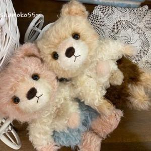ちょっぴりクラシカルな3色カラー💛熊♪カフェオレちゃん…ママサンボシュウ~🎶
