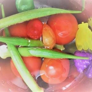 夏野菜☆(●´ω`●)☆…♪オクラナガ~~www