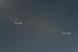 ペルセウス座流星群 2019
