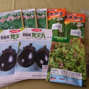 春野菜の種まき・ポットあげ