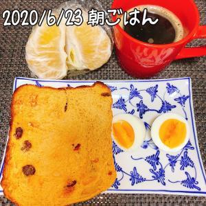 糖質オフごはん☆50.0kg 豚肉と野菜のオイスターソース炒め☆