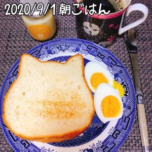 糖質オフごはん☆50.7kg 山菜とろろ蕎麦☆