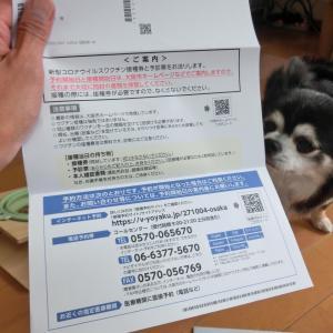 新型コロナワクチン接種券届きました!