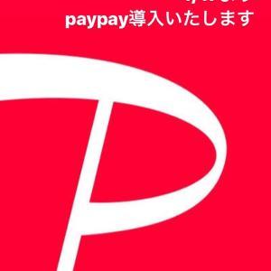 明日よりpaypay導入スタート♪