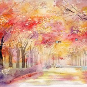11月水彩色鉛筆風景画コース「紅の道」