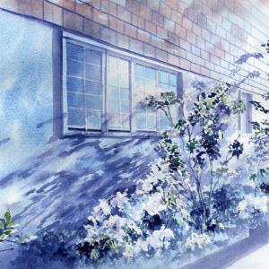 7月 透明水彩「昼下がり」産経学園