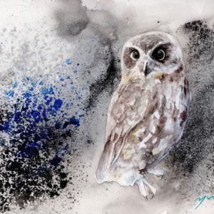 8月水彩色鉛筆教室「Owl」