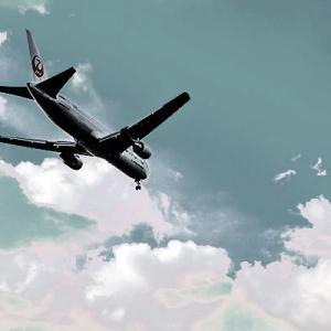 JALの国内線の人気路線が空席すぎてやばい……