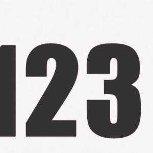 【JL123】日本航空123便が成田に出現 行き先はN/A