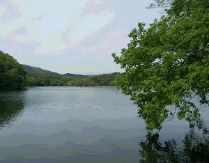快適なお散歩コース・一碧湖