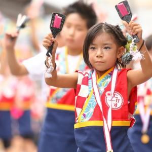 第66回よさこい祭り 本番2日目 愛宕競演場 高須子ども会