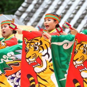 2019よさこい全国大会(第66回よさこい祭り) 高知城会場 とらっくよさこい(ちふれ) その2
