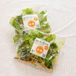 野菜サラダ☆お買い物マラソンの続き