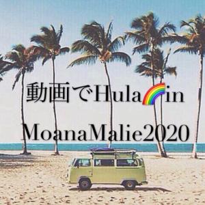 動画でHulaMoanaMalie2020