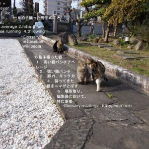 堀啓子「日本近代文学入門」
