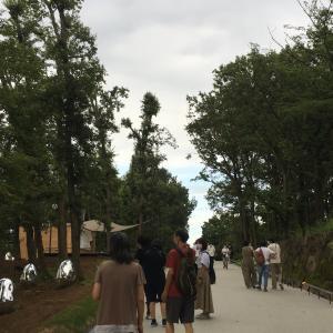 ★チームラボ どんぐりの森の呼応する生命 光と音と自然のアート 『武蔵野樹林パーク』