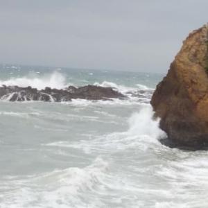 海に出られなくてもブログを書かねば