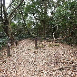 赤岩自然歩道を歩いてきました。
