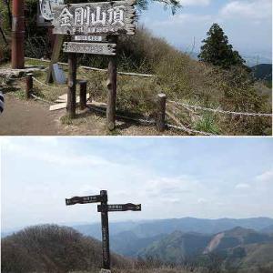 金剛山、伯母子岳を歩いてきました。