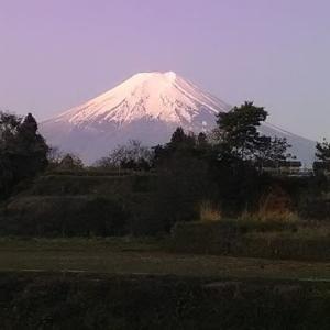 2019 ぐるっと富士山一周100kmウルトラマラニック ①トレーニング&作戦