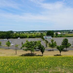 前田森林公園南側駐車場