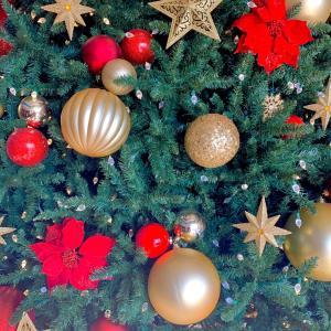 ピロ流、クリスマスの過ごし方