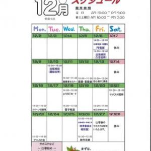 ★令和元年12月のスケジュール★