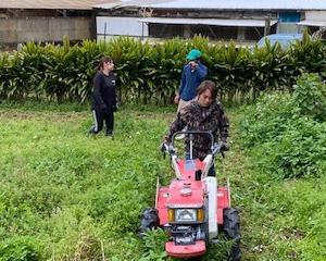 ジョブトレーニング(農業体験)